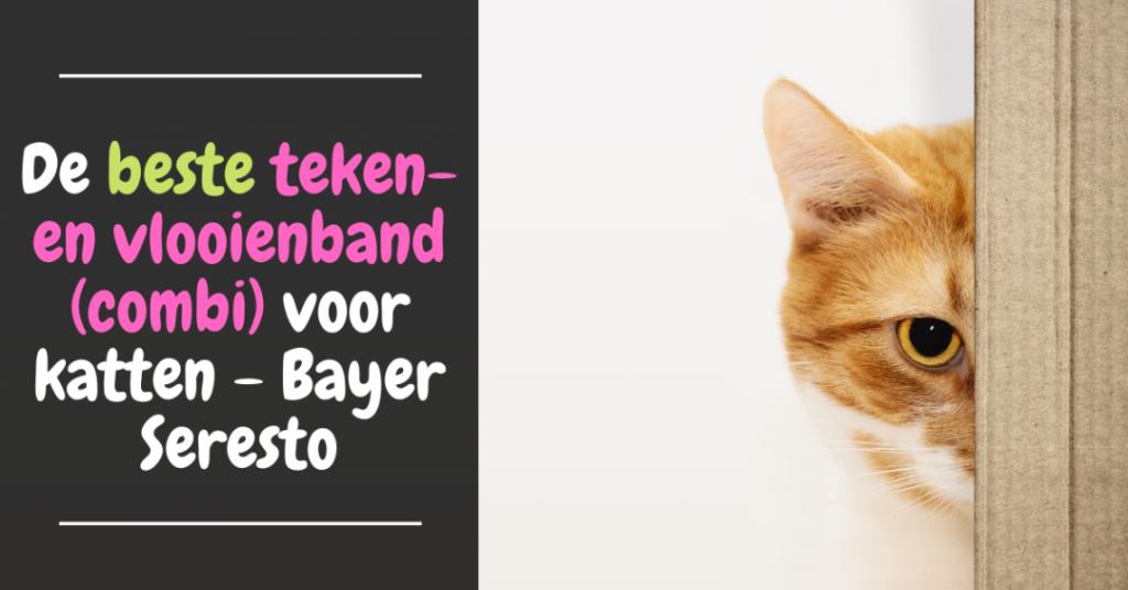 beste teken en vlooienband voor katten bayer seresto