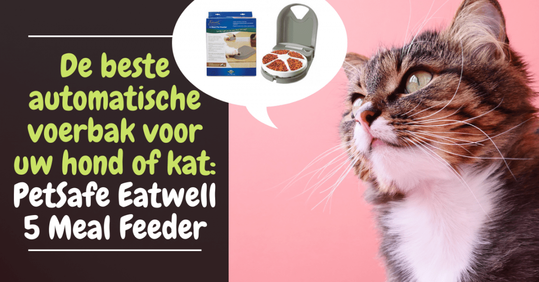 beste automatische voerbak voor katten honden - petwell eatsafe five meal automatische voerbak honden katten